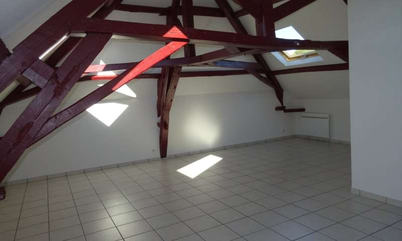 APPARTEMENT AY CHAMPAGNE ER.66740 - Galerie 1