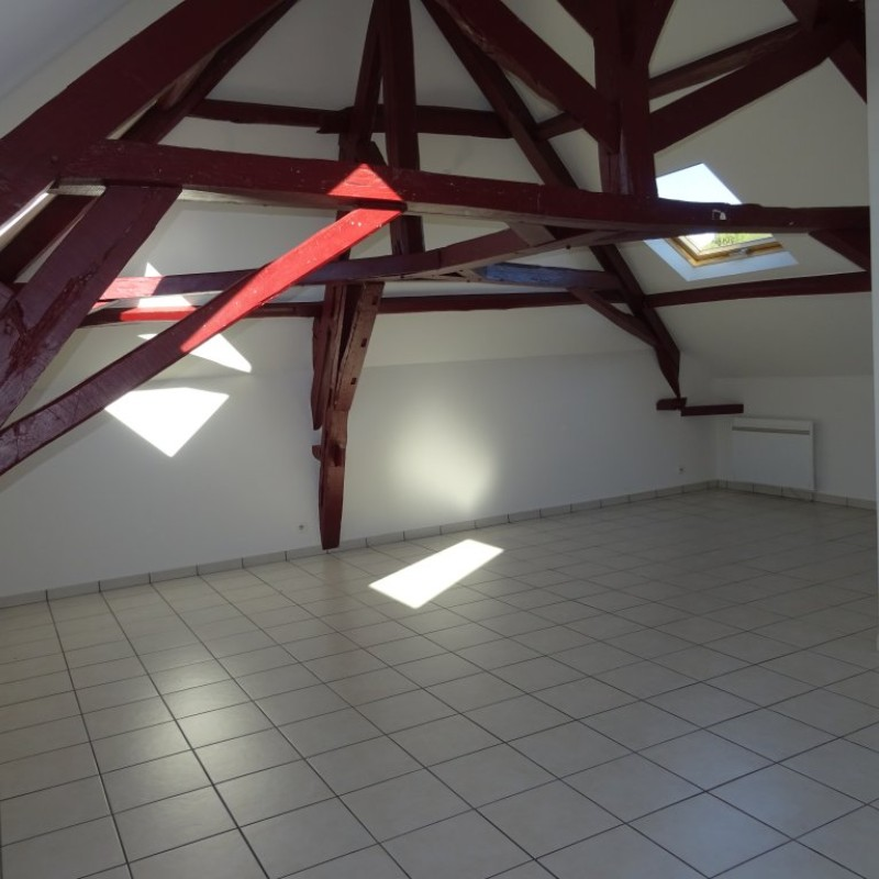 APPARTEMENT AY CHAMPAGNE ER.66740 - image principale